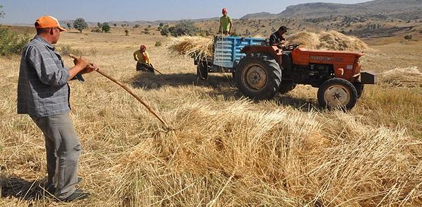 Genç Çiftçilere 30 Bin TL Hibe Kredi Müjdesi